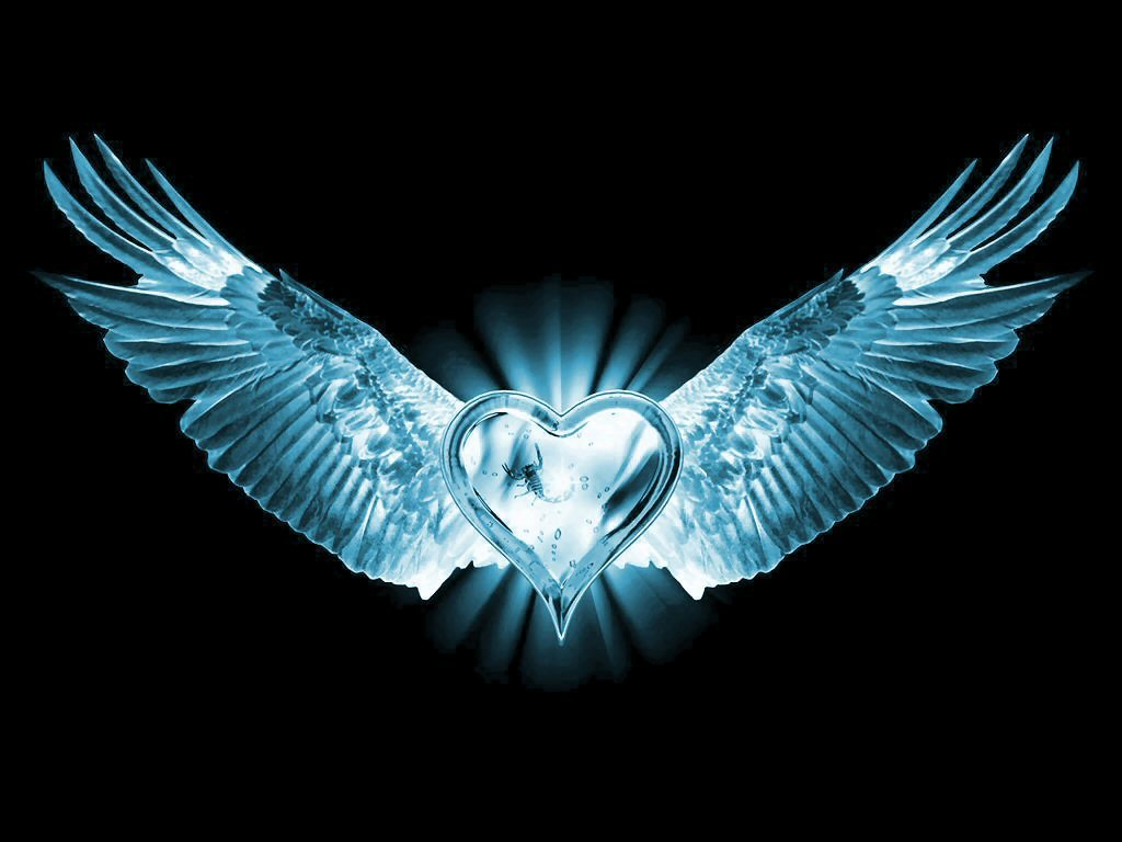 Wings of Love | New Heaven on Earth!