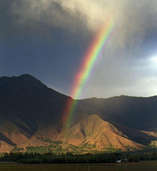 rainbowkashmir550