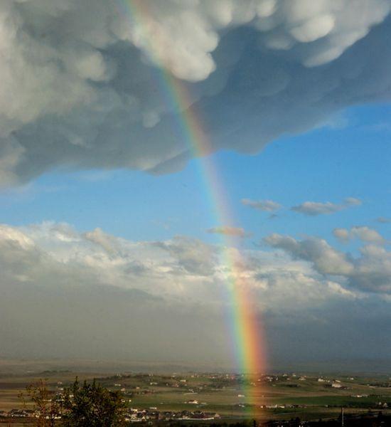 rainbowmontana550