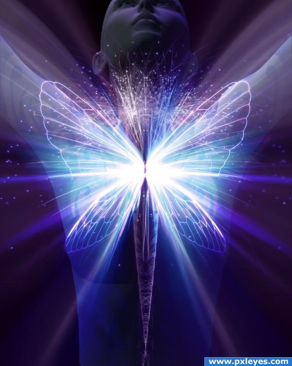 Embodiment of Light