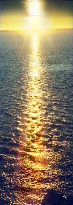 golden path of sunlight