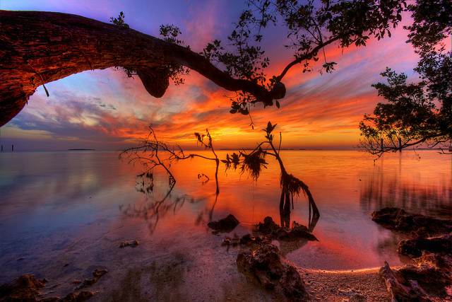amazing_collection_sunset_photography_1