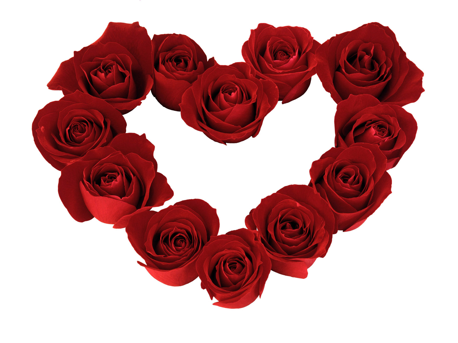 Heart Roses Ground Valentines Day 820389 New Heaven On Earth