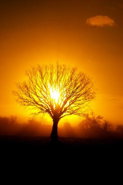 Sun-Rise pentaxuser.uk