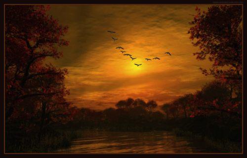 flying_geese