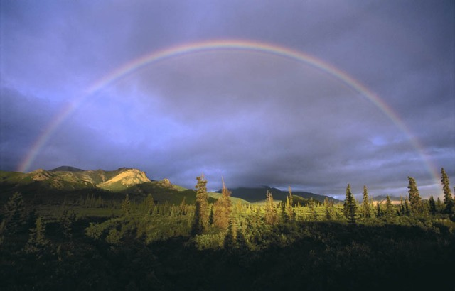 rainbow-denali-natl-park-935