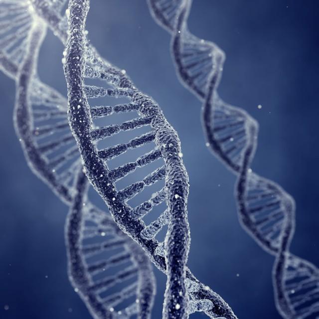 DNA: God's ladder in us!