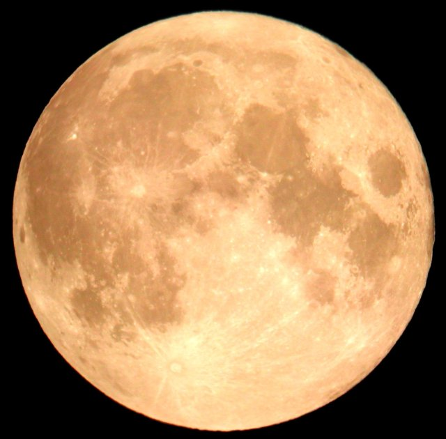 moon14day-1985c
