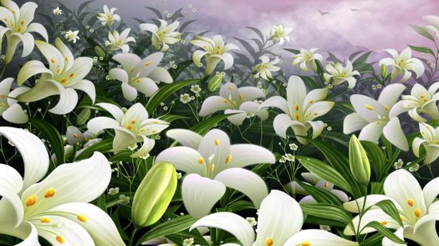 Easter-Lily-Wallpaper-for-PC