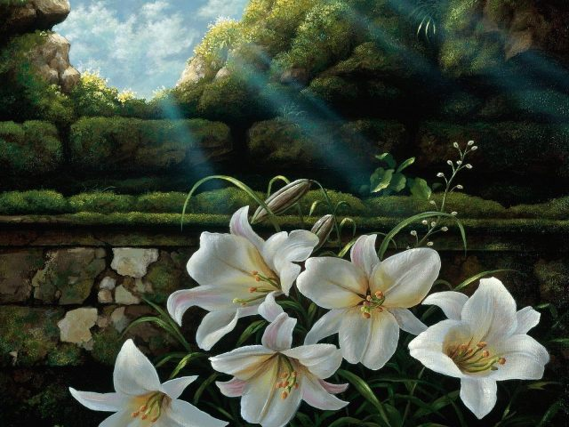 White-Easter-Lilies-Arts