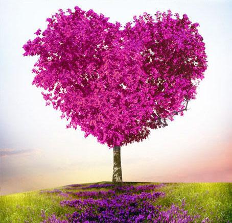 HWTM14-hearttree