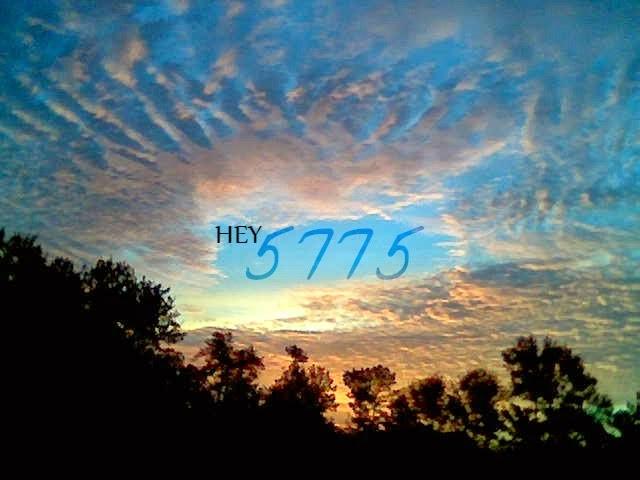 HEY 5775 (2)